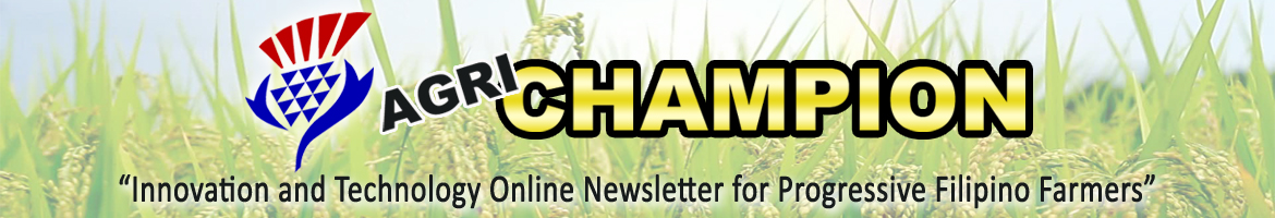 Agrichampion: Innovation and Technology Online Newsletter for Progressive Filipino Farmers